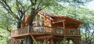 glamping cabane dans les branches
