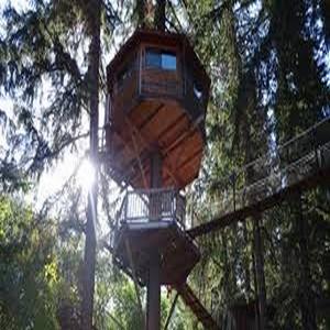 nuit en cabane dans les arbres