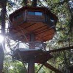 week-end insolite cabane dans les arbres