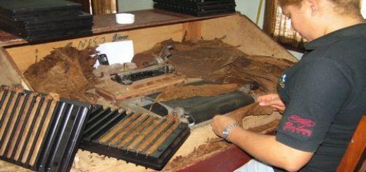Fabrique de cigares République Dominicaine