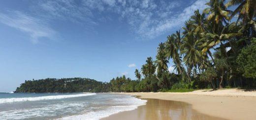 vacances au Sri Lanka chez des locaux